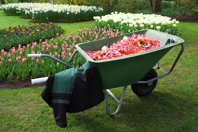 best wheelbarrows for landscapers