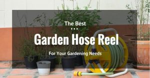 The Best Garden Hose Reel for a Beautiful Garden