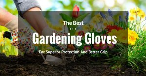 Protect Your Hands With The Best Gardening Gloves