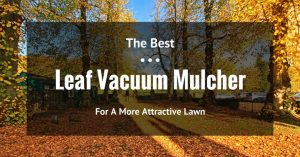 Proper Clean-Up With The Best Leaf Vacuum Mulcher