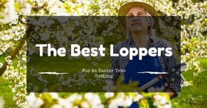 The Best Loppers To Get You A Beautiful Garden