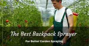 The Best Backpack Sprayer for the Professional Results