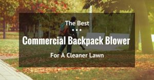 Make Your Garden Perfect with the Best Backpack Blower