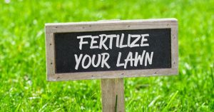 Prepare Your Lawn In Time With The Best Lawn Fertilizer