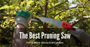 Easily Trimming With The Best Pruning Saw