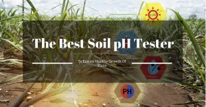Thriving of the Plants – the Best Soil pH Tester