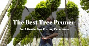The Best Tree Pruner For A Hassle-Free Pruning Experience