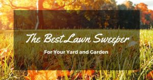The Best Lawn Sweeper: How to Be a Perfect Gardener