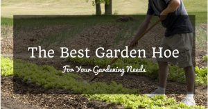 The Best Garden Hoe For Your Gardening Needs