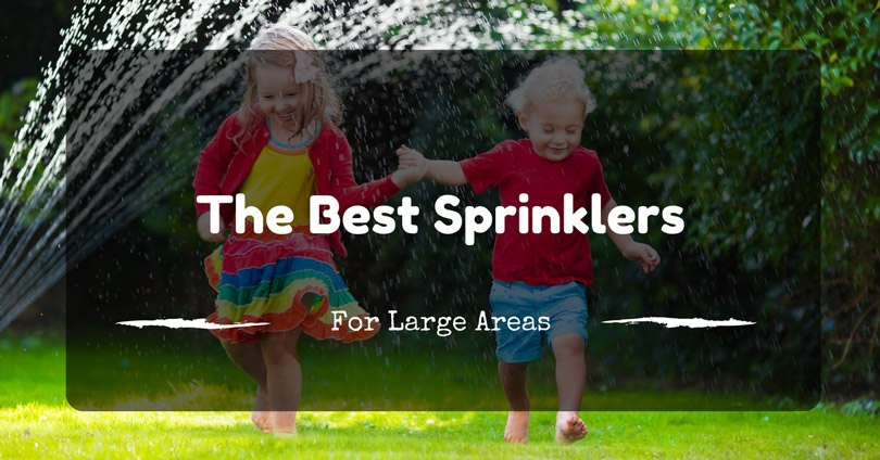 Best Sprinklers For Large Areas