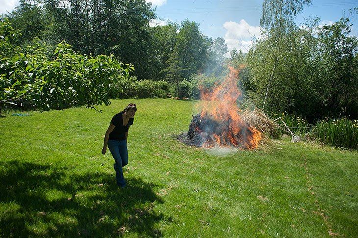how to kill pampas grass naturally