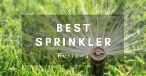 The Best Sprinkler: How to Water your Garden Without Effort