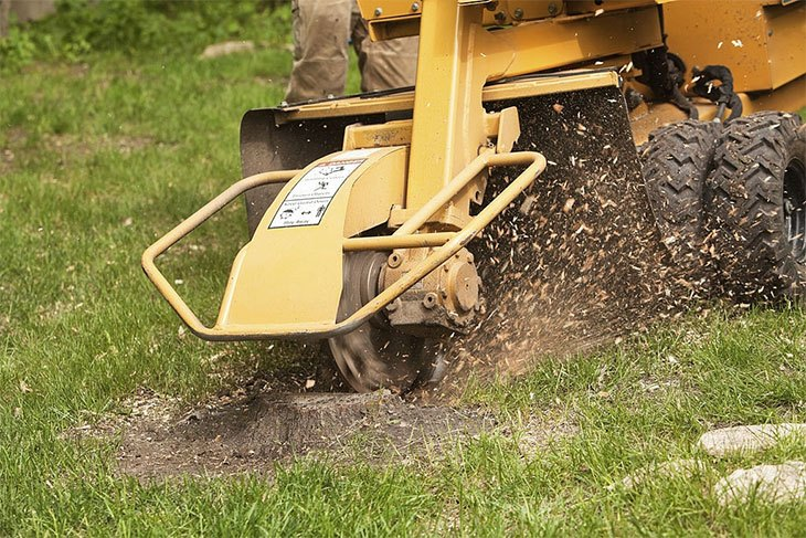 best stump grinder to buy