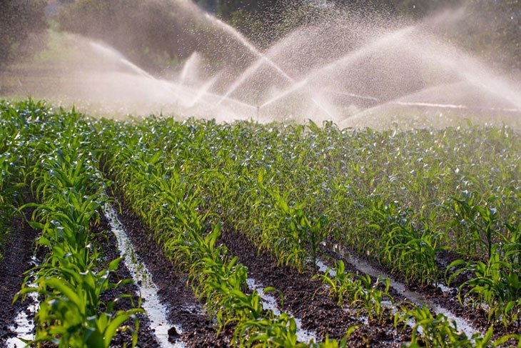 best drip irrigation system 2020